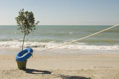 Rope attached to life belt encircling tree growing at water's edge on beach Stock Photos