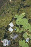 Garbage floating on lake surface Stock Photos