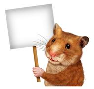 pet hamster holding a blank  sign - stock illustration