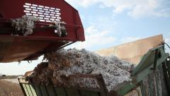 The harvester in the cotton field - stock footage
