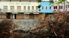 Hurricane protection storm damage trees Big Island Hilo city downtown - stock footage