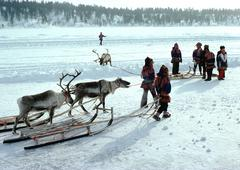 Finland, Saami with sleds and reindeer in snow Kuvituskuvat