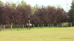 Woman riding a horse in paddock - stock footage