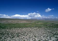 Chile, El Norte Grande, Altiplano, Lauca National Park, flatland with low - stock photo