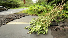 Island roads damaged Hurricane Iselle Tropical storm Hawaii Stock Footage