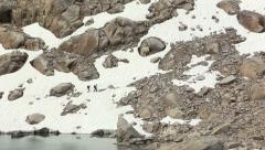 Hikers in the Bugaboo Mountains, B.C., Canada Stock Footage