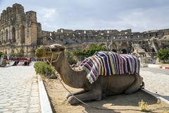 el-jam, colosseum, tunisia - stock photo