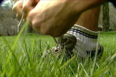 Runner Ties Shoe Closeup Stock Footage