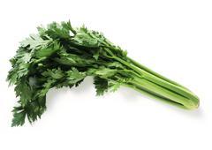 Celery, full length Stock Photos