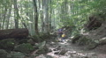 Father, Child Walking Mountain Trail, Paths, Family Hiking in Forest, Camping Footage