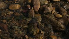 Small creek with clear water - rio de janeiro countryside Stock Footage