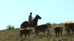 RA Gauchos 07 Stock Footage