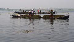 Floating Gardens in Inle Lake, Shan State, Myanmar (Burma) - stock footage