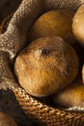 raw organic brown jicama - stock photo