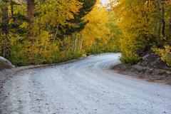 Fall aspen road Stock Photos