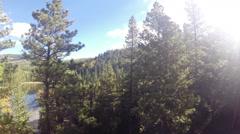 Treetop trees Stock Footage