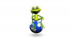 Stock Video Footage of Frog on Globe 2
