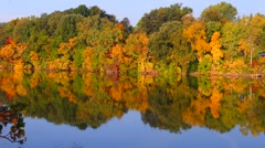 Autumn Colors, Trees Reflected in Calm, Flowing River - stock footage