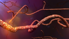 Microscopic Ebola Virus 3D Animation 2 Stock Footage