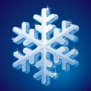 Frosted snowflake - stock illustration