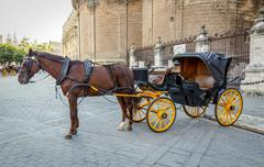 Black  horse and traditional tourist carriage in sevilla Stock Photos