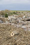 Stock Photo of Birdhouse atop pile of mulch