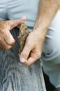 Man whittling piece of bark, cropped view Stock Photos