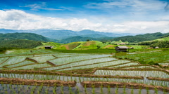 Nimbus clouds moving on the rice terraces Stock Footage