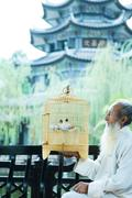 Elderly man wearing traditional Chinese clothing, holding up birdcage, pagoda in - stock photo