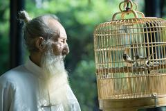 Elderly man wearing traditional Chinese clothing, looking at birds in cage - stock photo
