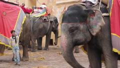 Taxi from elephants in Jaipur Stock Footage