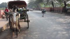 Rickshaw with a horse on Indian street Stock Footage