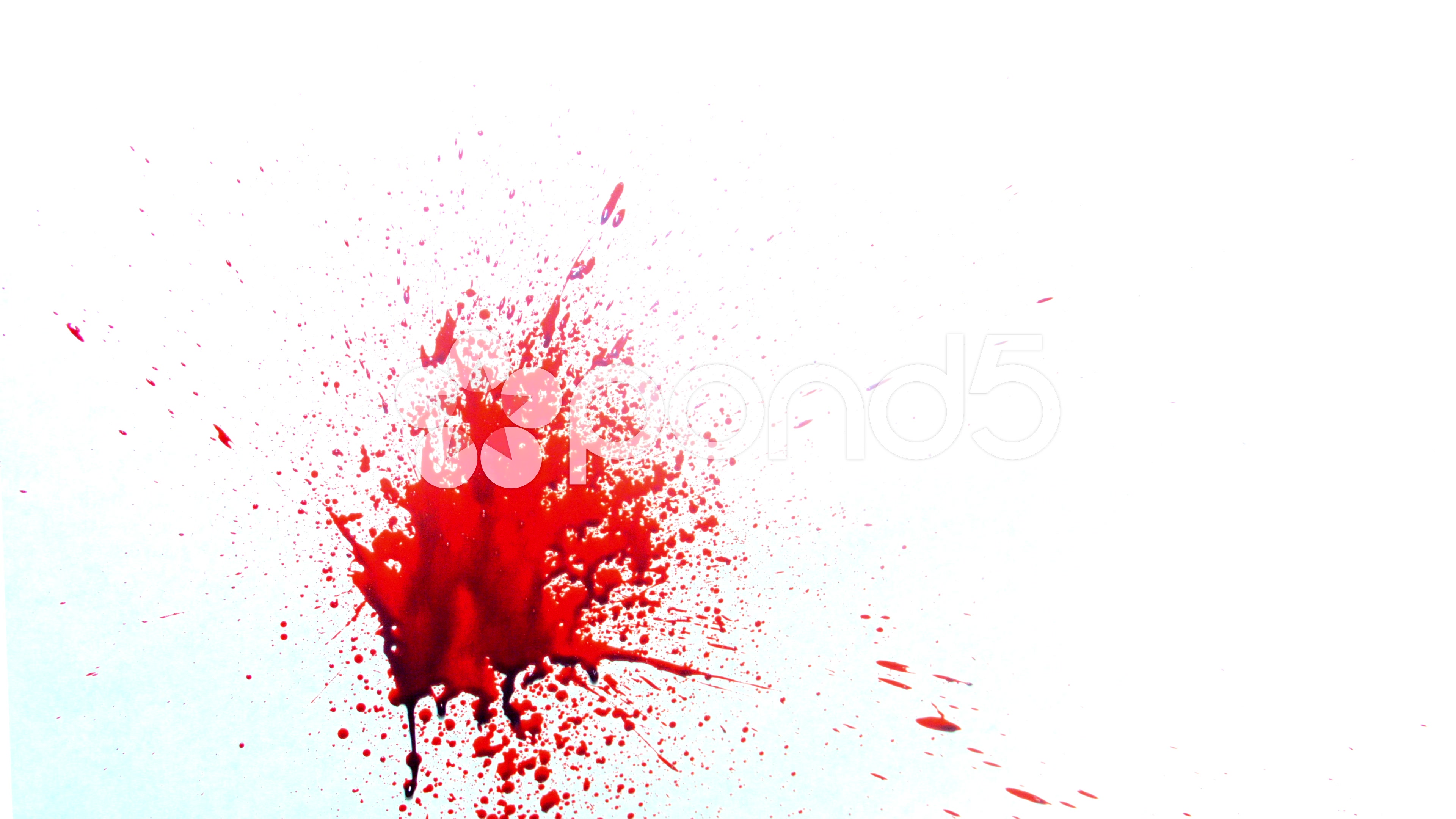 how to get into blood spatter analysis