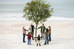 Group of people holding hands in circle around solitary tree on beach - stock photo