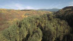 Aerial Flying over Autumnal Forest in Canada tilt up to Scenic Stock Footage
