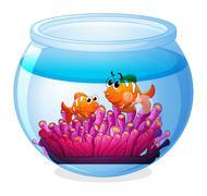 An aquarium with two orange fishes - stock illustration