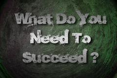 What do you need to succeed concept Stock Illustration
