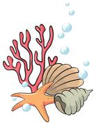 Shells and starfish under the sea Stock Illustration