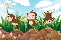 Three energetic monkeys - stock illustration