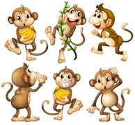 Stock Illustration of Playful wild monkeys