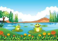 Two playful frogs at the pond Stock Illustration