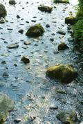 Rocks scattered in stream - stock photo