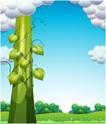 The giant bean Stock Illustration
