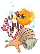 An orange puffer fish near the seashells - stock illustration