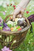 Hand picking up wooden basket of fresh produce Stock Photos