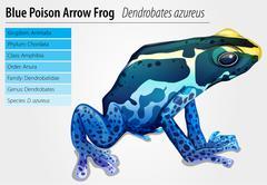 Poison dart frog Stock Illustration