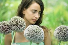 Woman with allium flowers, head and shoulders Stock Photos