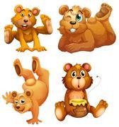 Four playful brown bears - stock illustration