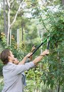 Man doing yardwork, trimming shrub - stock photo