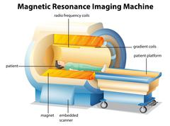 MRI - stock illustration
